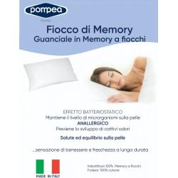 FIOCCO DI MEMORY POMPEA...